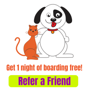 Thornleigh Vet Refer a Friend