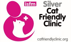 CFC Silver logo for clinics